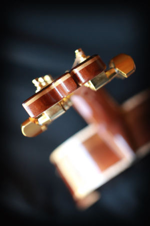 Custom Handmade Concert Acoustic Guitar with Brazilian Rosewood